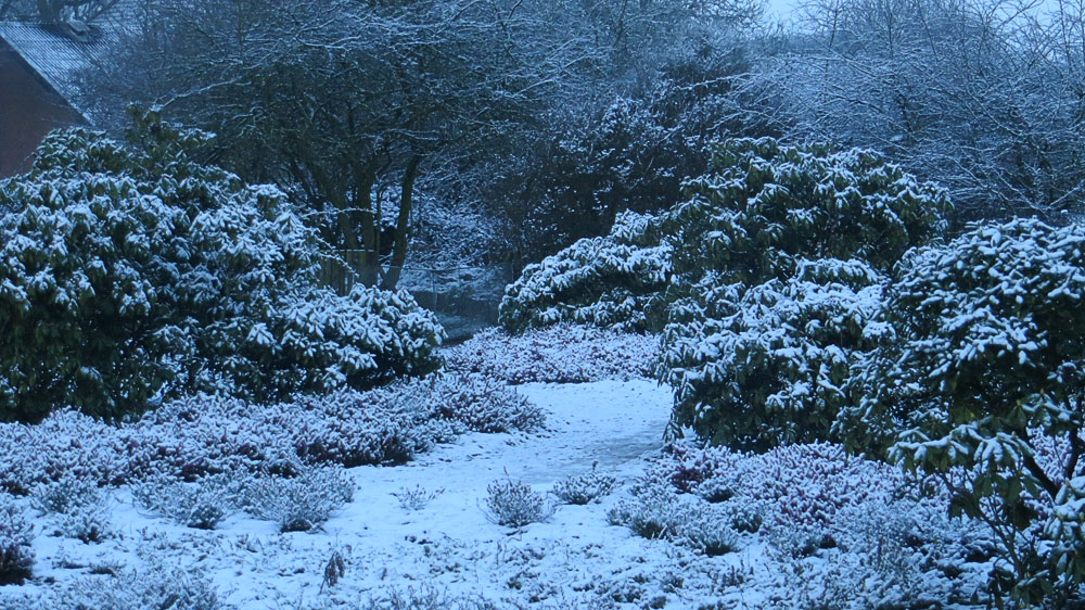 American Garden in the snow